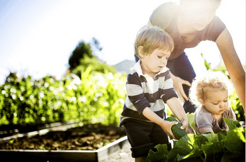 Kids Doing Chores in Garden